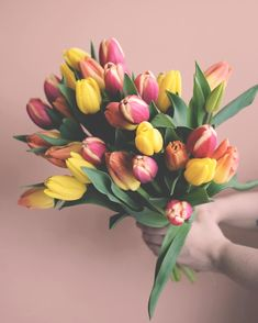 Pink Tulips, Tulips Flowers, Colorful Flowers, Tulip Bouquet, Bouquet Flowers, Beautiful Bouquet Of Flowers, Dose Of Colors, Florals, Delivery