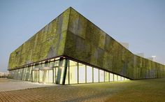 Biological Concrete Adds a Mossy Living Layer to Buildings | Gadgets, Science & Technology