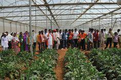 13-14 जुलाई 2016, कांकेर पंचायत जनप्रतिनिधियों ने इंदिरा गांधी कृषि विश्वविद्यालय के अलग-अलग विभागों में भ्रमण कर सिंचाई एवं कृषि से जुड़ी अन्य तकनीकों को समझा। विश्वविद्यालय परिसर में लगाई गई फसलों को उन्होंने रूककर करीब से देखा।