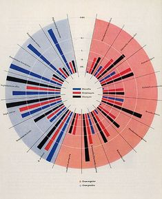 Will Burtin: Design and Science Scope: diagram of the impact of Penicillin, Streptomycin and Neomycin on bacteria, 1951