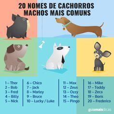 20 nomes de cachorros machos