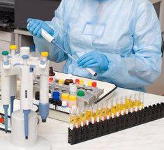 Читать и понимать: Биохимический анализ крови — норма и расшифровка
