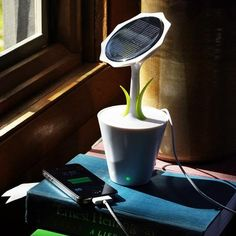 The Sunflower Solar Charger brings solar energy to your desk! Set it near a window and the Sunflower will charge your phone, tablet, or other gadgets. Gadgets And Gizmos, Tech Gadgets, Cool Gadgets, Amazing Gadgets, Fujifilm Instax, Solar Energy, Solar Power, Sun Power, Smartphone