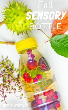 FALL SENSORY BOTTLES - Let babies and toddlers enjoy sensory play and explore the colours, sounds, shapes and patterns of Fall/Autumn safely with attractive homemade sensory discovery bottles.