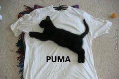 Orjinal Puma'lar Geldi
