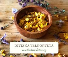 Recepty z divizny Natural Healing, Serving Bowls, Tableware, Nature, Dinnerware, Naturaleza, Tablewares, Dishes, Nature Illustration