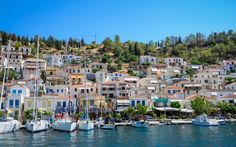 Poros Greece, You Are Amazing, Greek Islands, Adventure, Landscape, World, Places, Travel, Dolphins