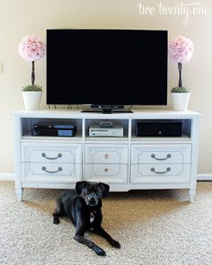 Dresser transformed into entertainment center/media cabinet.  Remove drawers, fresh coat of paint- done!