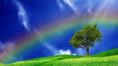 real-rainbows-in-the-sky-wallpaper-3.jpg (700×394)