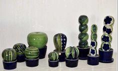 Min kaktusfamilj : )