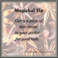 Magickal Tip - Star Anise for Luck – Charissa's Cauldron - Pinned by The Mystic's Emporium on Etsy