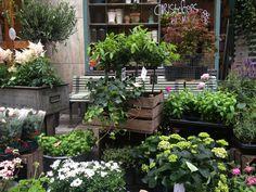 Christoffers Blommor - flower shop in Stockholm - via Dos Family