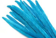 Royal Blue Ring Neck Pheasant Tail Feathers. A Thin Turquoise Colored Bird Quill for Making Fancy Hat Bands and Long Fashion Earrings Ring Necked Pheasant, Fancy Hats, Unusual Jewelry, Blue Rings, Craft Patterns, Jewelry Making Supplies, Stone Pendants, Etsy Handmade, Beautiful Necklaces