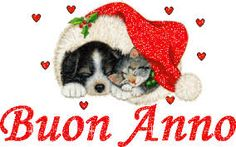 Christmas Puppy and Kitten Postage - Xmascards ChristmasEve Christmas Eve Christmas merry xmas family holy kids gifts holidays Santa cards Christmas Puppy, Christmas And New Year, Red Gifts, Cute Gifts, Love Pet, Cool Pets, Merry Xmas, Holiday Cards, Christmas Cards