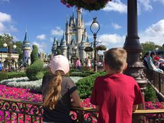 Disney World and Universal Studios in Orlando: 7 tips to survive them - Mini Me Explorer Orlando Florida, Mini Me, Universal Studios, Survival, World, Disney, Tips, The World, Advice