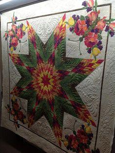 Lone Star, via Flickr.  Jessica's Quilting Studio quilt design, lone star, studio beauti, stars, butterfli appliqu, lonestar quilt, quilt studio, jessica quilt