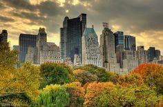 Центральный парк Нью-Йорк: 17 тыс изображений найдено в Яндекс.Картинках