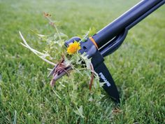 The DIYNetwork.com experts show how to grow a lush, weed-free lawn that looks just like the professionals'.
