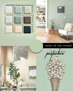 167 Best Colour Trends Italianbark Images In 2020 Colorful