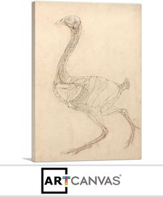 Ready-to-hang Fowl Body 1806 Canvas Art Print for Sale canvas art print for sale. Free hanging accessories and insurance. Art Prints For Sale, Canvas Art Prints