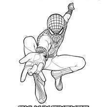Dibujo De Spiderman Para Colorear Spiderman Coloring Coloring Pages Spiderman Art