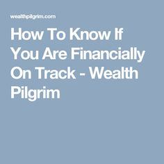 How To Know If You Are Financially On Track - Wealth Pilgrim