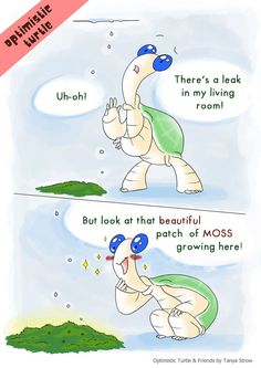 Optimistic Turtle and Household Plants by solray-chan on DeviantArt
