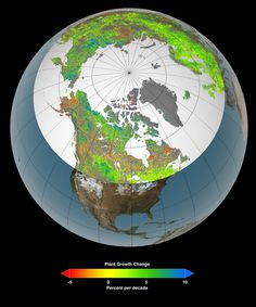 Across the entire northern hemisphere, ice and snow are retreating in front of an invading green army as warmer climates turn once-freezing tundras into temperate shrublands.