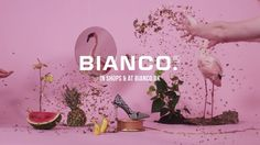Bianco 'Spring has arrived'