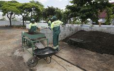 Cidade de SP ganha primeira central de compostagem para resíduos das feiras livres