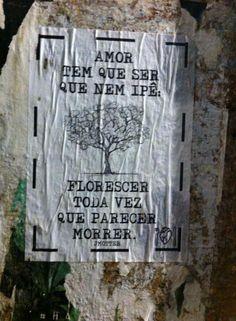 Fonte: Olhe os Muros (Bairro Largo da Ordem em Curitiba Paraná - Foto enviada por Jéssica A. Gusso)