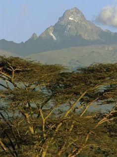 A View of Mount Kenya from Near Karatina-Michael S^ Lewis-Photographic Print Rainforest Facts, Mount Kenya, Kenya Nairobi, Asia, Kenya Travel, African Safari, Top Of The World, East Africa, Historical Photos