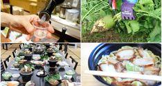 5 Best Things to Do in Kitakata, Fukushima's Gourmet Paradise | tsunagu Japan Stuff To Do, Things To Do, Good Things, Ramen Restaurant, Tokyo Station, Fukushima, Organic Vegetables, Hot Springs, Cities