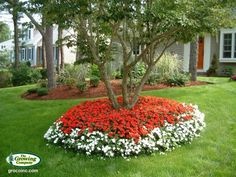 Trust our team to handle landscape services in Barnstable, MA. We help you choose the right flowers and plants to add beauty to your lawns and gardens. Landscaping Around Trees, Landscaping Tips, Front Yard Landscaping, Flower Bed Designs, Flower Pot Design, Front Yard Planters, Garden Planters, Landscape Design, Garden Design