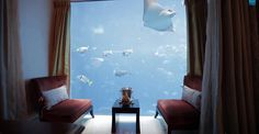 Ever wanted to sleep with the fishes? Not in the mob-boss sort of way, but literally — sleep with a view of the fish right outside your window?