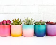 These cement planters are perfect for succulents or small cacti. Choose your color gradient in the drop down menu. Each planter measures 4 tall and 3 in diameter. - Planters - ideas of Planters Painted Plant Pots, Painted Flower Pots, Cement Flower Pots, Decorated Flower Pots, Painted Pebbles, Flower Planters, Diy Flowers, Flower Vases, Cactus Flower