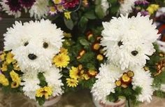 Aren't these just too cute for words? Who knew that you could take mums and turn them into something so adorable? I know that my day would be brighter if one of these little guys arrived as a gift for me!  Could be used as wedding decorations for a dog lover.