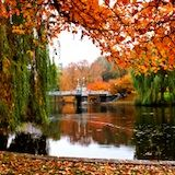 Boston in the fall...so beautiful....