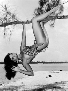 Bettie Page is pictured here in a 'Tarzan' like pose hanging upside down from a tree with a knife between her teeth while on a modelling assignment in Africa USA, a wildlife park in Boca Raton