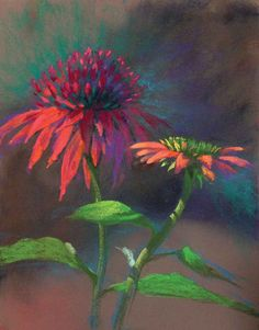 Coneflower Fancy Pants by Jude Tolar Coneflower 5 Pastel Color Palettes for 5 Floral Favorites Artists Network Soft Pastel Art, Chalk Pastel Art, Pastel Artwork, Oil Pastel Paintings, Pastel Drawing, Chalk Pastels, Oil Pastels, Horse Paintings, Pastel Paper