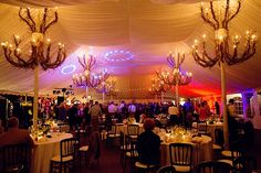 Colored lights, cloths exquisitely draped from the ceiling, and rustic chandeliers adorned with twigs illuminate this outdoor wedding reception, held in a tent on the grounds of the Galleria Marchetti in Chicago, IL. Black chairs and ivory linens add to the wedding's traditional-meets-modern style, giving it a magical vintage chic flair. The John Parker Band entertained the newlyweds and guests at the summer wedding. http://www.jpband.com/weddings/
