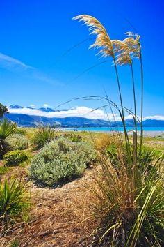 Kaikoura Beach, Canterbury, South Island, New Zealand