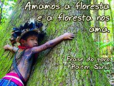 AME A FLORESTA!
