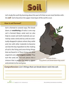 Types of Soil | Types Of, Worksheets and Grade 2