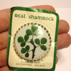 Waterford Ireland REAL SHAMROCK CLOVER PIN Brooch Irish St. Patricks Day Vintage