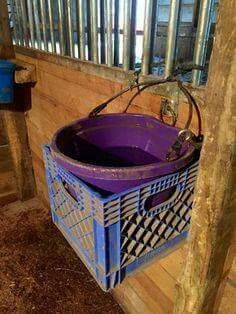 For horses that tip buckets.