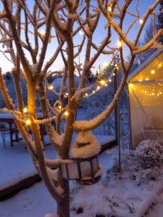 My frozen garden Green Gables, Ladder Decor, Snowman, Frozen, Garden, Outdoor Decor, Home Decor, Garten, Decoration Home