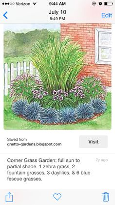 Corner Grass Garden - three different tiers for front slope 1 Zebra Grass 2 Fountain Grass 3 Daylilies 6 Blue Fescue Grass Outdoor Landscaping, Outdoor Plants, Front Yard Landscaping, Outdoor Gardens, Corner Landscaping Ideas, Landscaping With Grasses, Landscape Grasses, Full Sun Landscaping, Fence Ideas