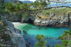 Point Lobos, Carmel, CA One of the best places to see Marine life along the Central CA Coast. Tidepools, Great day hikes & picnic area with amazing sandy beaches. One of the few places you can actually see past the dark blue water   Beyond beautiful.. one of the most breathtaking spots on the Pacific Coast.