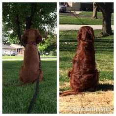 what a difference nine months and fifty pounds make!